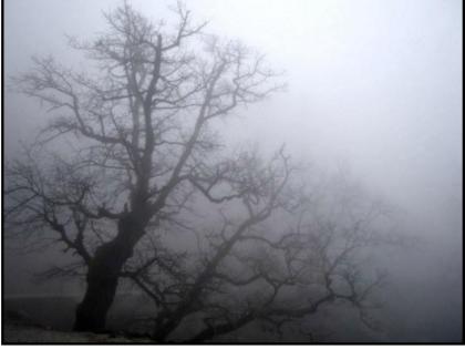 Paranormal Experiences?
